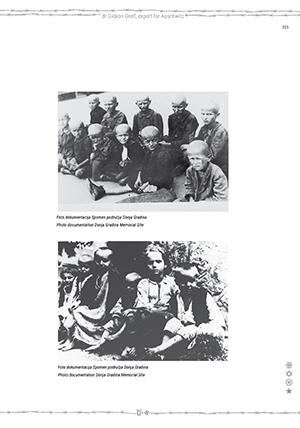 stranice-jasenovacza-sajt-5